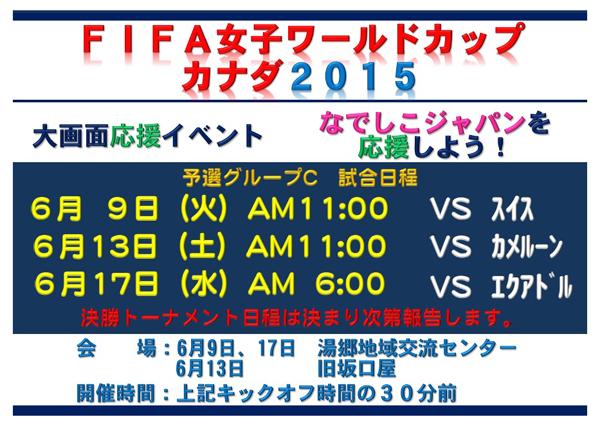 ワールドカップ パブリックビューイング 2015年6月