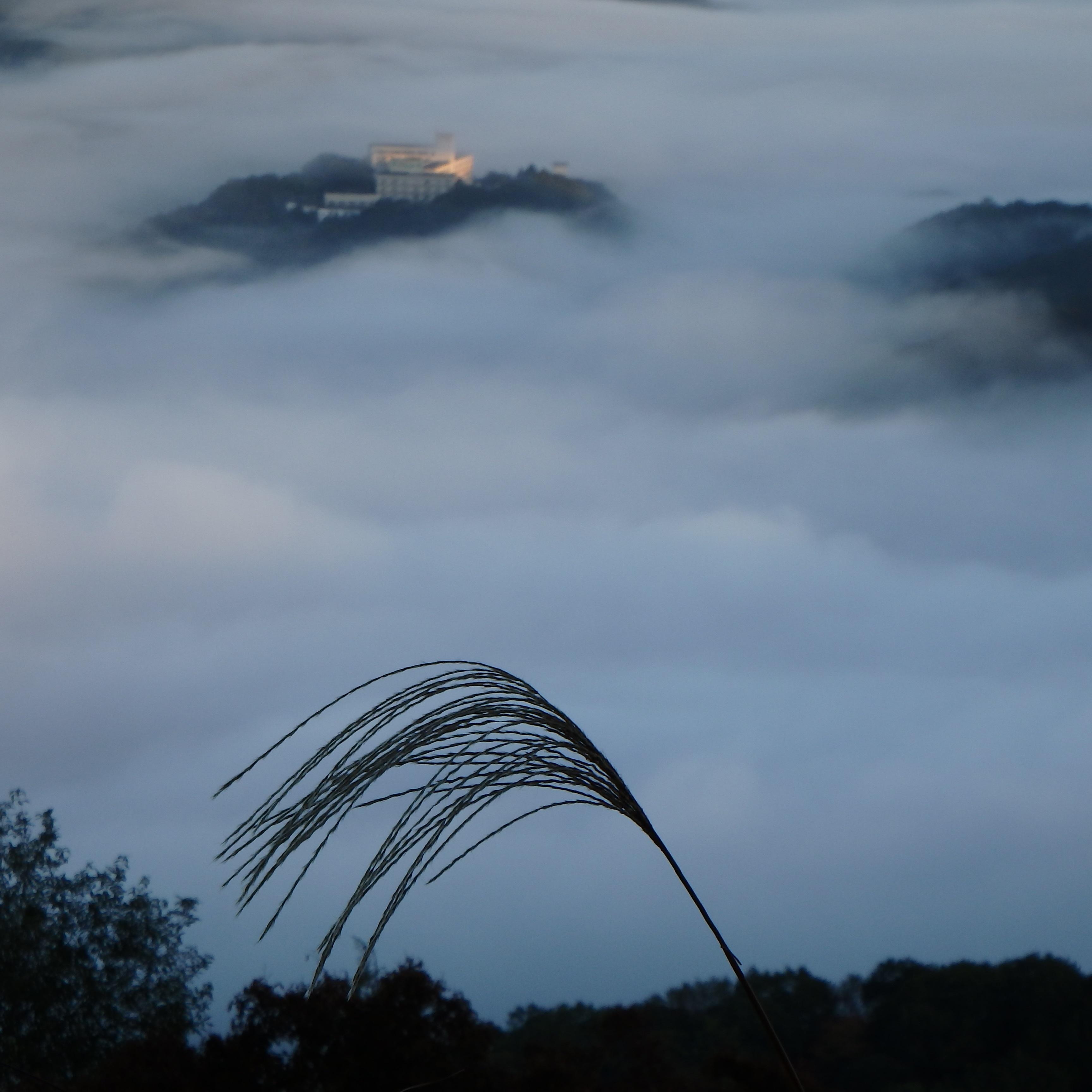 雲海10月16日3