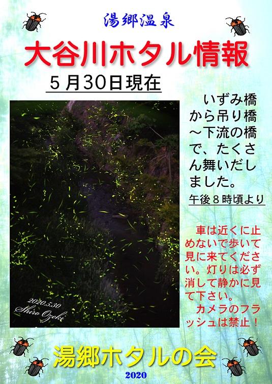 2020.05.30ホタル情報04